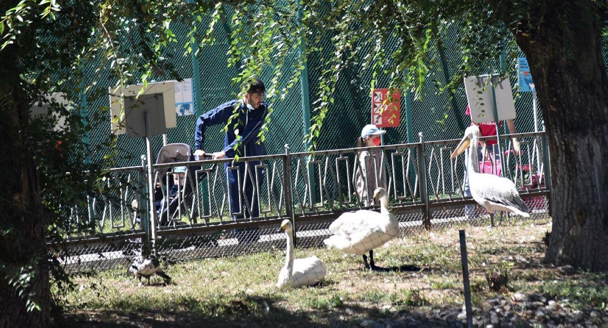 Алматы зообағы жұмысын қайта бастайды