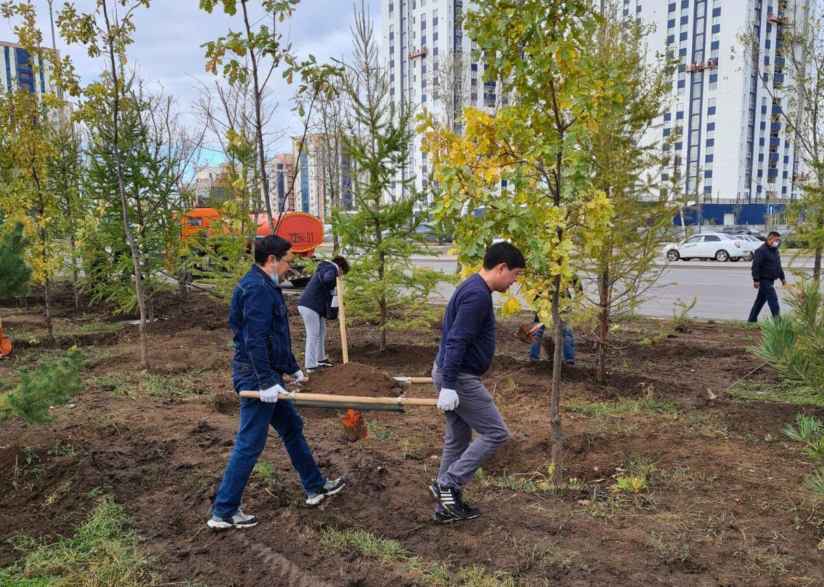 Nur Otan өкілдері елордада 120 түп ағаш отырғызды
